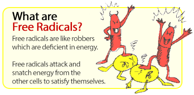 how to get rid of free radicals in the body